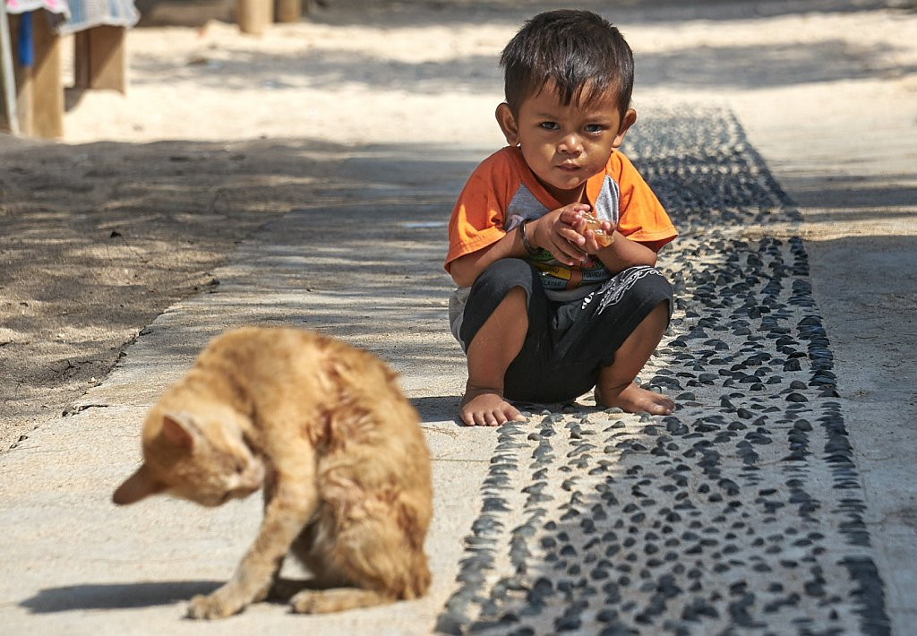 Small boy with cat