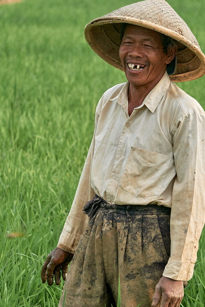 Indonesia and its people - A rice farmer